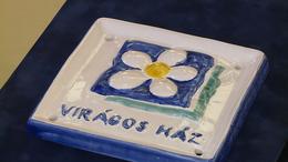 Virágos Kaposvár