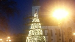 Ilyen lesz a város kivilágított karácsonyfája