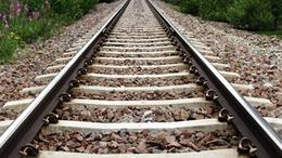 Kidőlt fa miatt állt a vasúti forgalom Siófoknál