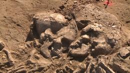 Elképesztő leleteket találtak Somogyban