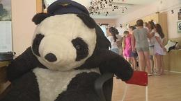 Pandák lepték el az óvodát