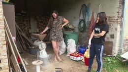 Brazil, japán és kínai fiatalok segédkeznek egy várdai farmon