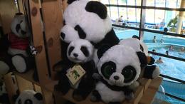 Pandák a Virágfürdőben