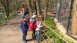 Ismét kaposvári óvodások látogattak el a pécsi állatkertbe