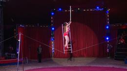 Ilyen volt idén a cirkuszok éjszakája