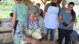 Így készítették nagyanyáink káposztás hajtókát
