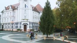 Már a főtéren áll Kaposvár karácsonyfája