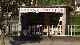 Karanténkönyvtár nyílt a Dél-Somogyi Darányban