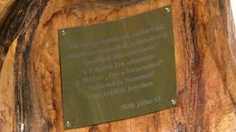 Emlékerdőt ültettek Kaszón