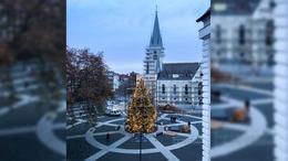 Így fest a város karácsonyfája kivilágítva!