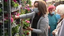 Virágba borult a kaposvári piac