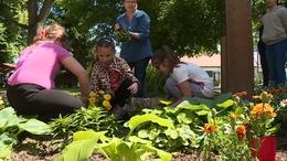 Virágokat ültettek a kaposfüredi iskolások
