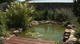 Díjat nyert egy kaposfüredi kert