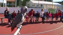 A madarak világával ismerkedhettek meg a csökölyi gyerekek