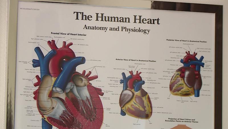 szív vashiány