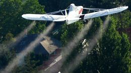 Folytatódik a szúnyogirtás a Balatonnál