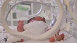Több mint 600 baba született