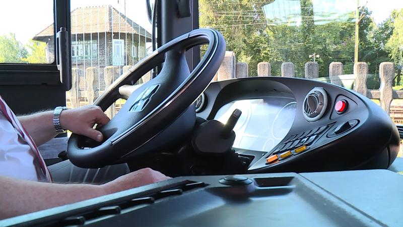 buszsofőr autóbusz