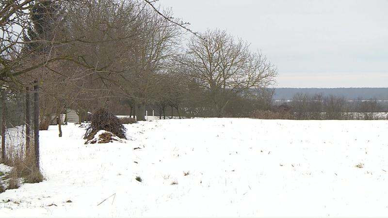 A változékony tél nem tett kárt eddig a gyümölcsösökben vagy a szántóföldeken.
