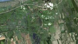 Leváltották a Balaton-felvidéki Nemzeti Park igazgatóját