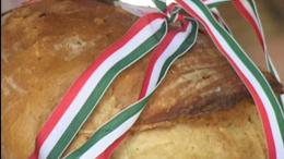 77 tonna búza gyűlt össze a magyarok kenyeréhez