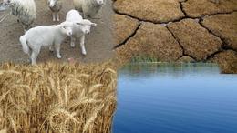 Még 5 napig lehet benyújtani a gazdálkodási napló és a tápanyag-gazdálkodási terv adatait
