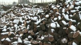 140 somogyi településen késik az ingyen tüzifa