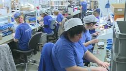 Csaknem 1500-zal többen dolgoznak Kaposváron