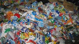 Idén is szorgosan gyűjtögettek a kaposvári gyerekek