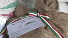 Gyűjtik a búzát a magyarok kenyeréhez