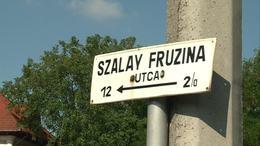 Újabb utcát adtak át ma Kaposváron