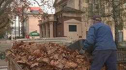 Indul a zöldhulladék gyűjtése Kaposváron