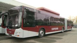 Nemzetközi versenyen a kaposvári buszflotta