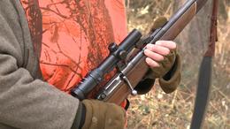 Vigyázzon, mert lőnek az erdőben