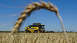 A zökkenőmentes aratásért