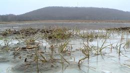 A belvíz és a fagyott föld miatt bosszankodnak a gazdák