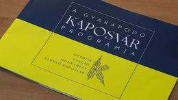 Gyarapodó Kaposvár