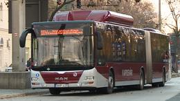 Terelőútvonalon a buszok