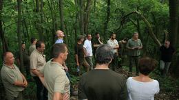 Az erdészeti génmegőrzés jelene és jövője
