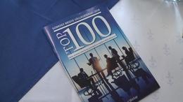 TOP 100-as cégek