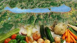 Magyar asztalra, magyar ételt