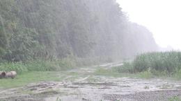 Komoly csapadékkal újabb ciklon közeleg felénk!