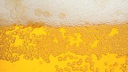 Ennyire szeretjük a sört