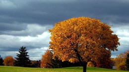 Ma még felhős idő, majd vasárnaptól egyre több napsütés!