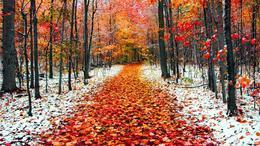 Jelentős felmelegedéssel kezdődik a november!