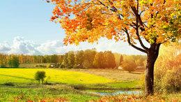 Jelentős felmelegedéssel kezdődik az október!