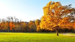 Csendes őszi idő, egyre több napsütéssel!