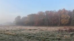 Csendes, párás, néhol tartósan ködös idő!