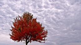Ma még a felhőké lesz a főszerep!
