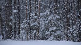 Megérkezett a tél eddigi legnagyobb havazása